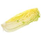 白菜(1/4カット 長野県産 油井さん他)